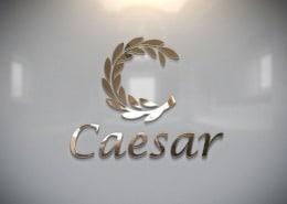 Caesar Tobacco: Branding Logo Design